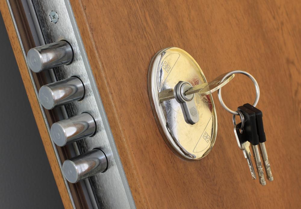 Sigurnosna vrata Feri