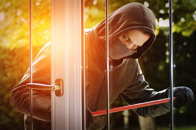 Zaštita od lopova